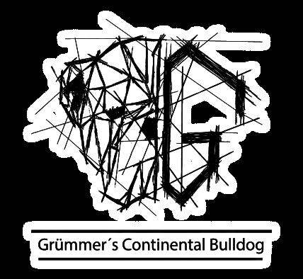 Continental Bulldog Züchter - Grümmer's